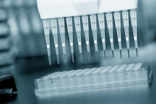 PCR (צילום: shutterstock)