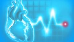 cardiac arrest (אילוסטרציה: shutterstock)